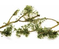 "модель Bachmann 32644 Серия SceneScapes. Wire Foliage Branches. Medium Green 1 - 3"" 2.5 - 7.6см. Большая упаковка 60 шт."