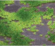 "модель Faller 180468 Upland Moor Landscape Segment -- 8-1/4 x 5-7/8 x 3/8""  21 x 14.8 x .9см."