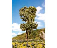 """модель Faller 181200 Premium Deciduous Tree -- Moor Birch 6-1/4""""  16см."""
