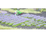 модель Noch 07136 Имитаторы цветов лаванда 18 полос + 18 пучков