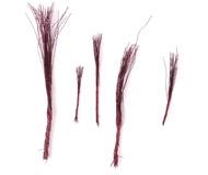 модель Железнодорожный Моделизм 18467-2 Заготовка для ствола дерева (ствол с ветками). 5 штук. Изготовлены из медной проволоки. Можно придать форму по своему усмотрению. Для того, чтобы сделать полноценное дерево, достаточно расправить, придав нужную форму, и использовать либо фирменную присыпку, имитирующую листву, либо использовать крошки поролона соответствующего цвета.